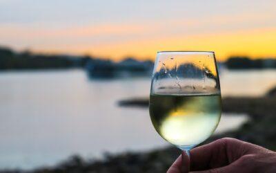 En lille guide til hvidvin – kom lynhurtigt til at lyde som et vin-geni!